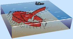 大型定置網漁業