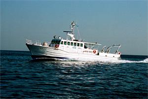 漁業調査船「新ひょうご」